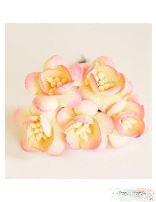 Цветы вишни молочный-св.розовый