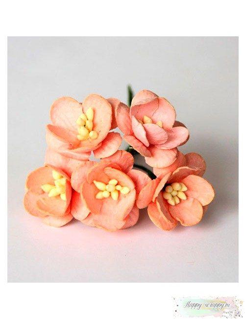 Цветы вишни персиковые