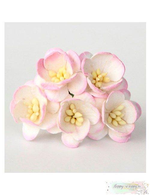 Цветы вишни белый-св.розовый