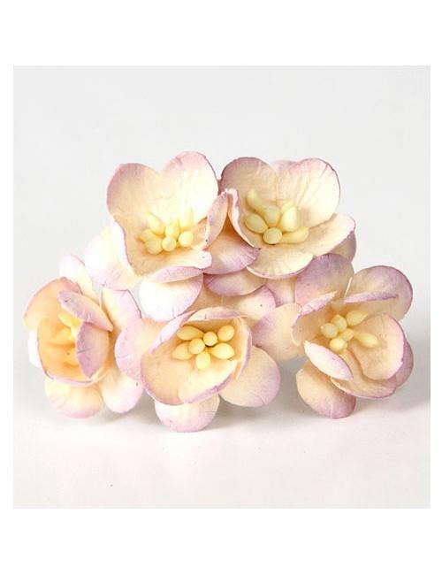 Цветы вишни св.сиреневый-молочный