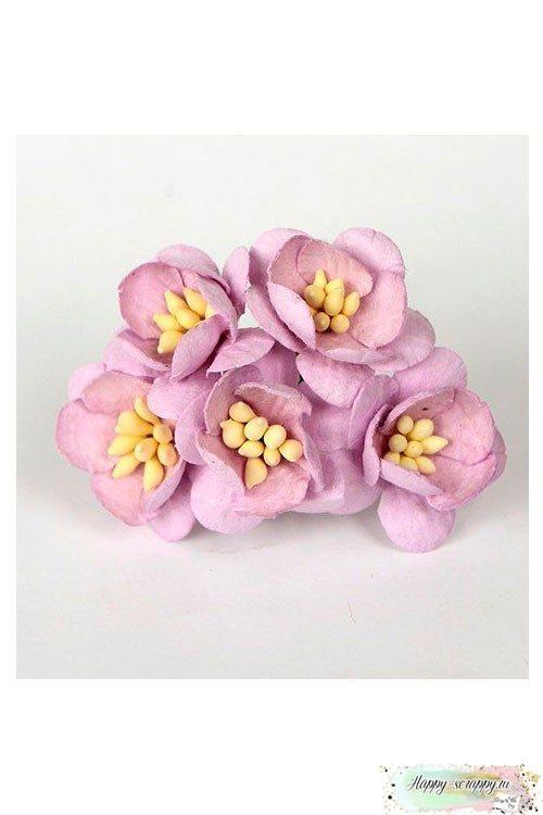Цветы вишни св.сиреневые