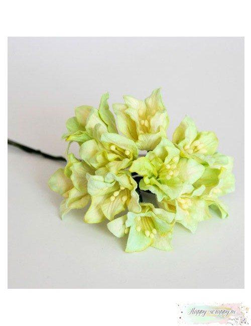 Лилии св.зеленые (1 шт)