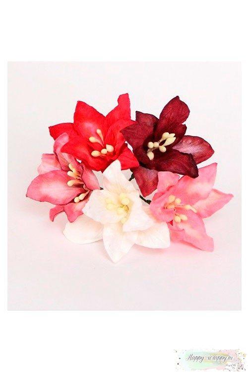 Лилии красный микс (5 шт)