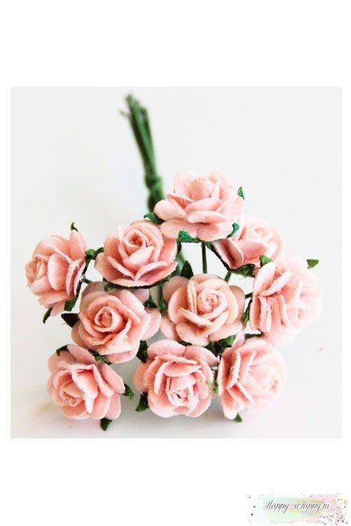 Розы розово-персиковые
