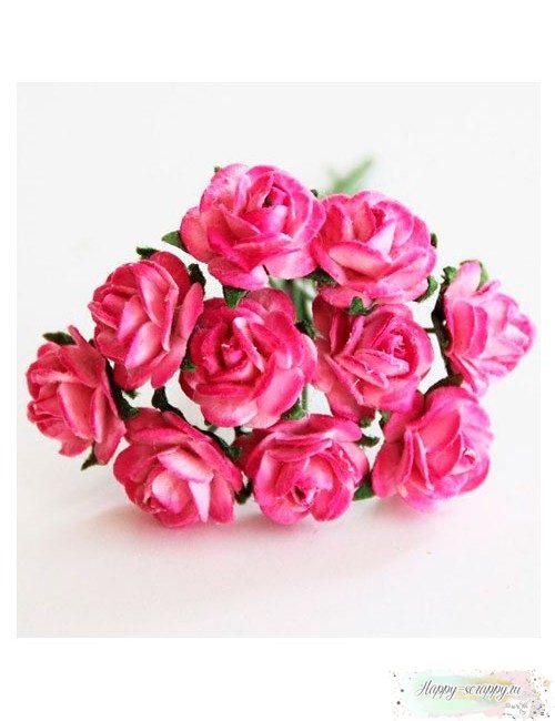Розы розовый-фуксия