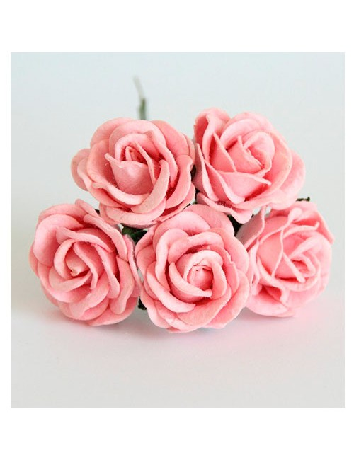 Розы розовоперсиковые