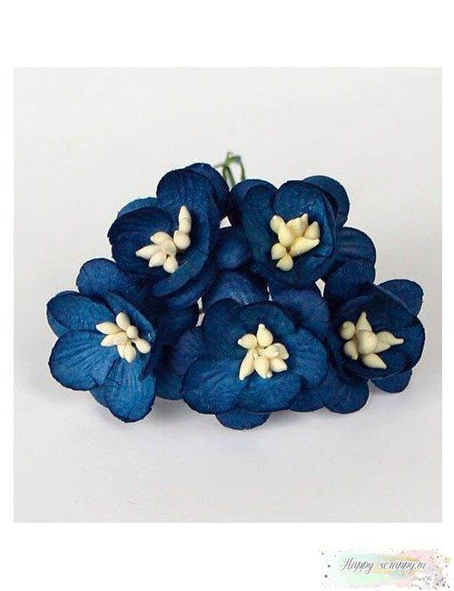Цветы вишни синие