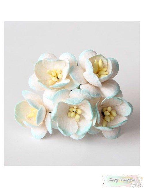 Цветы вишни св.голубой-белый