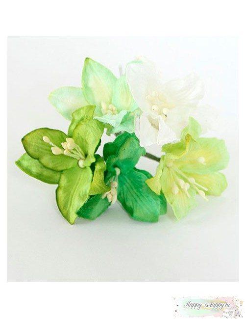 Лилии зеленый микс