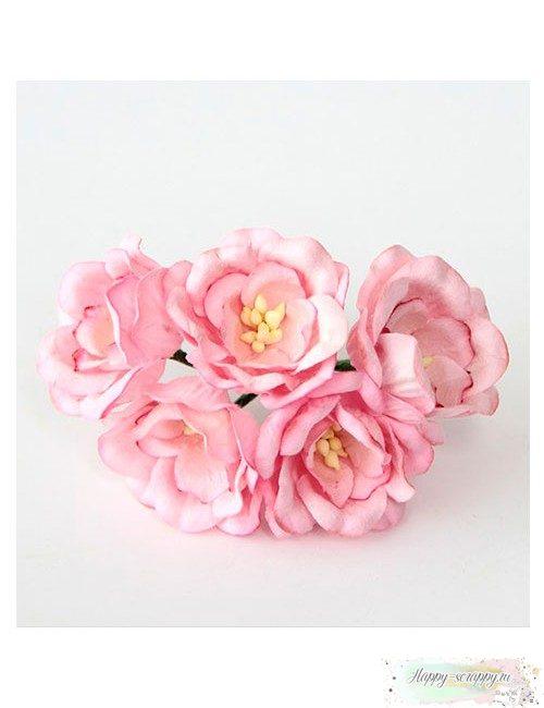 Магнолия розовая 4 см