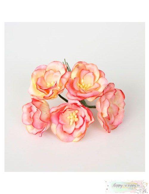 Магнолия желто-розовая 4 см