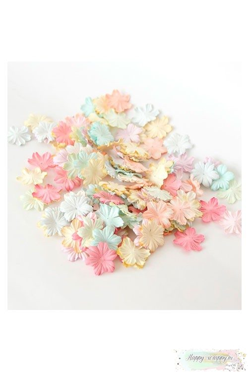 Плоские цветы — пастельный микс