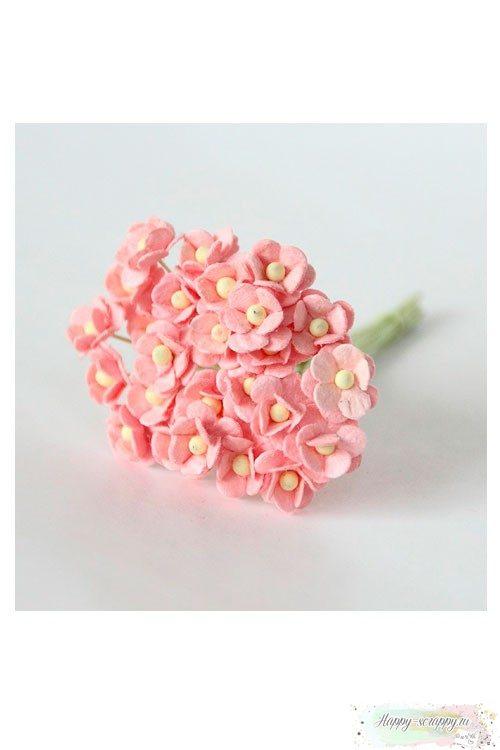 Цветы мини-вишни розово-персиковые (10 шт)
