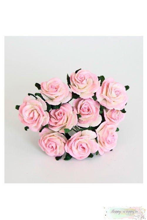 Розы бело-розовые (5 шт)