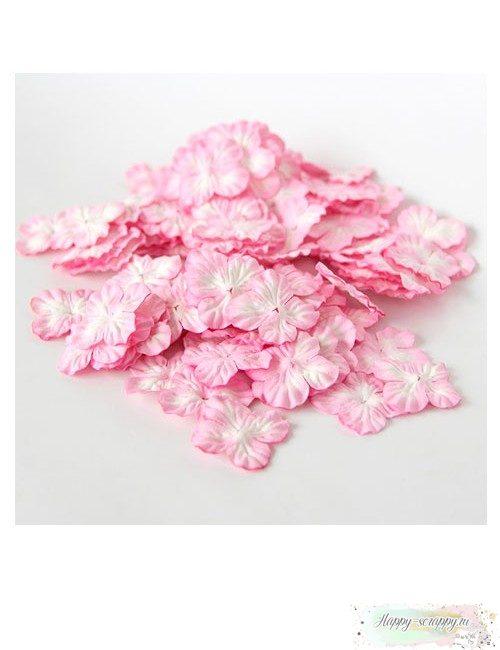 Гортензии маленькие - розовые (10 шт)