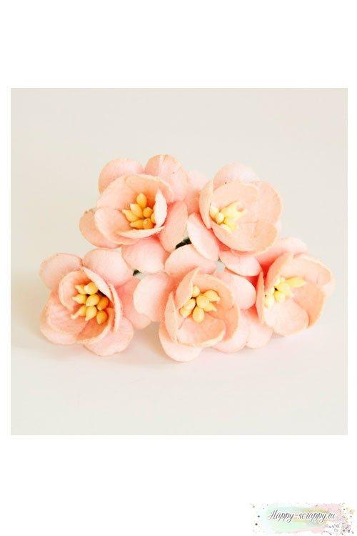 Цветы вишни розово-персиковые (5 шт)