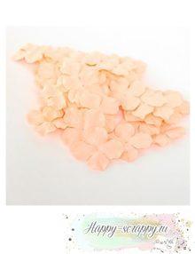 Гортензии большие - светло-персиковые (5 шт)