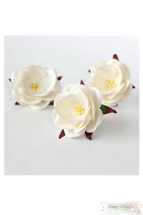 Дикая роза - белая (1 шт)