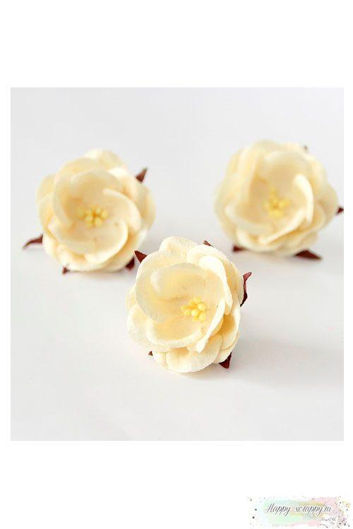 Дикая роза - молочная (1 шт)
