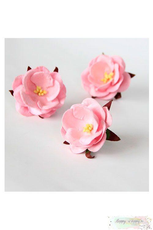 Дикая роза - св.розовая (1 шт)