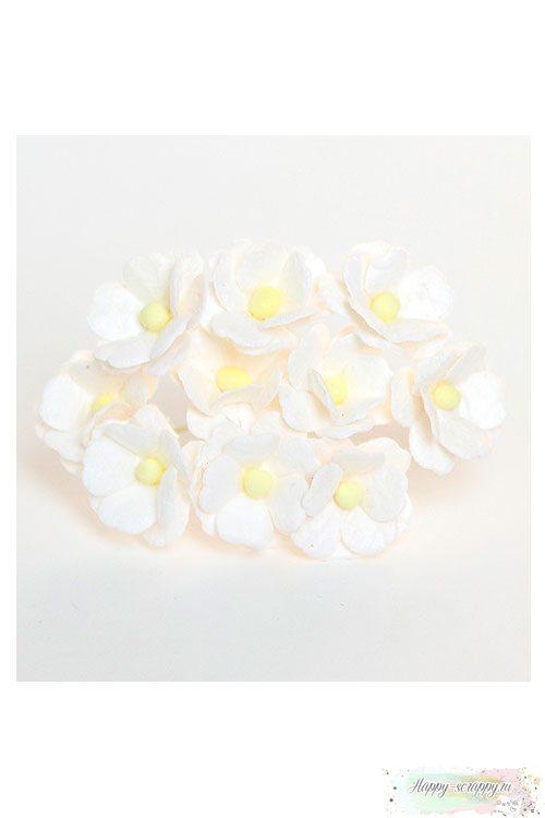Цветы средней вишни - белые (5 шт)