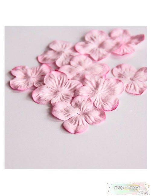 Гортензии маленькие - светло-розовые (10 шт)
