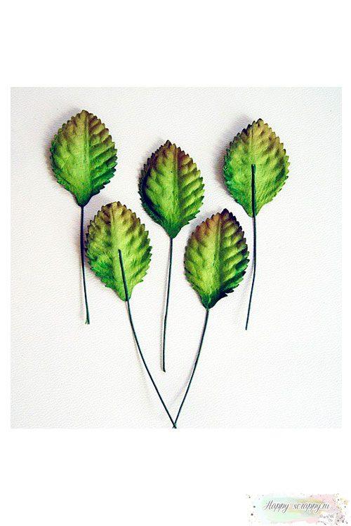 Листья зеленые маленькие со стебельком (10 шт)