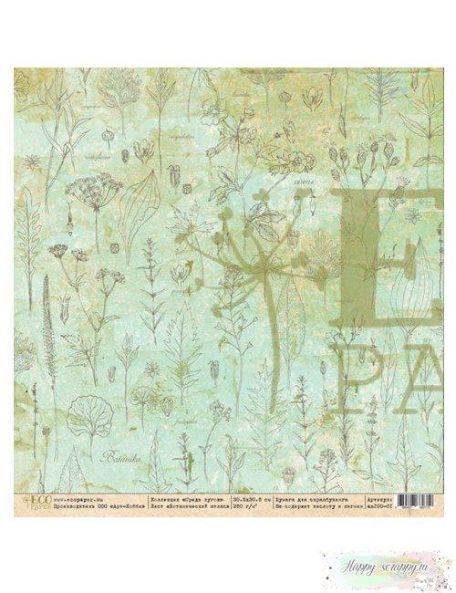 Бумага для скрапбукинга Среди лугов - Ботанический сад