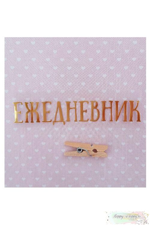Термо-стикер Ежедневник