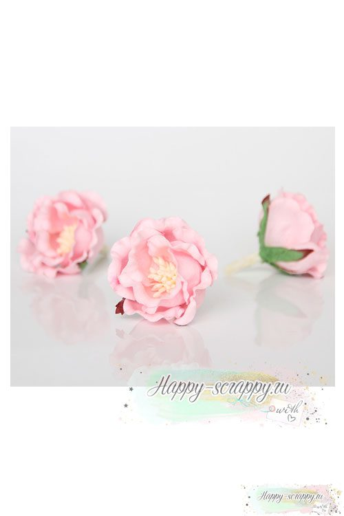 Полиантовая роза светло-розовая (1 шт) .