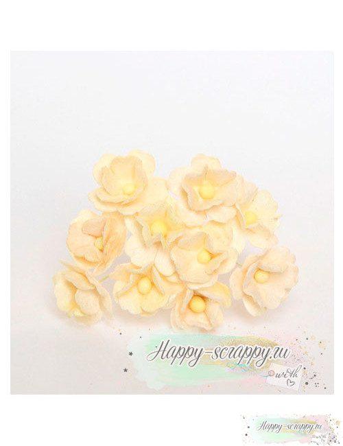 Цветы вишни средние молочные (5 шт)