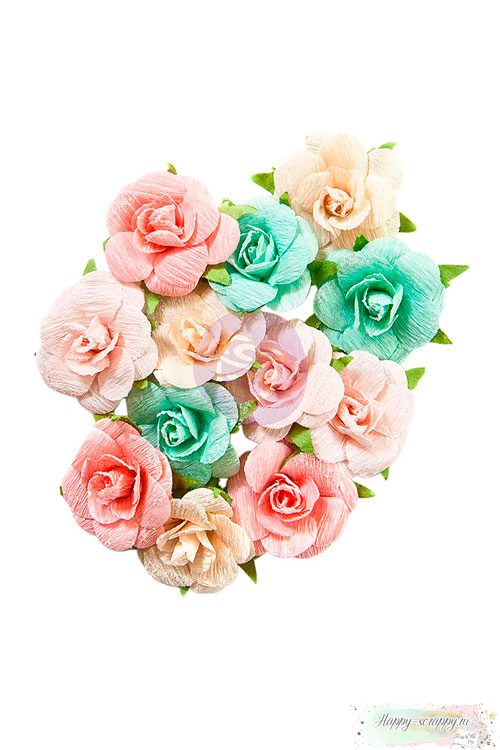 Набор цветов Havana - Savina