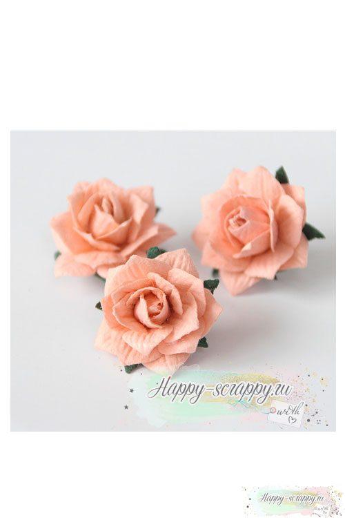 Жасмин - светлый розовоперсиковый (1 шт)
