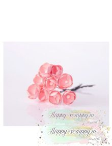 Лютики розовоперсиковые (5 шт)