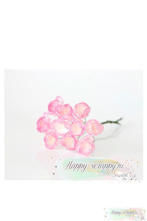 Лютики св.розовый — белый (5 шт)