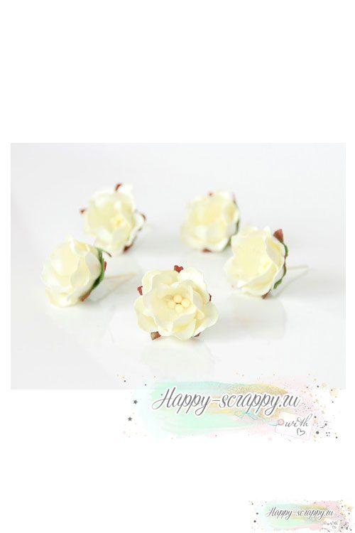 Цветы яблони молочные (1 шт)