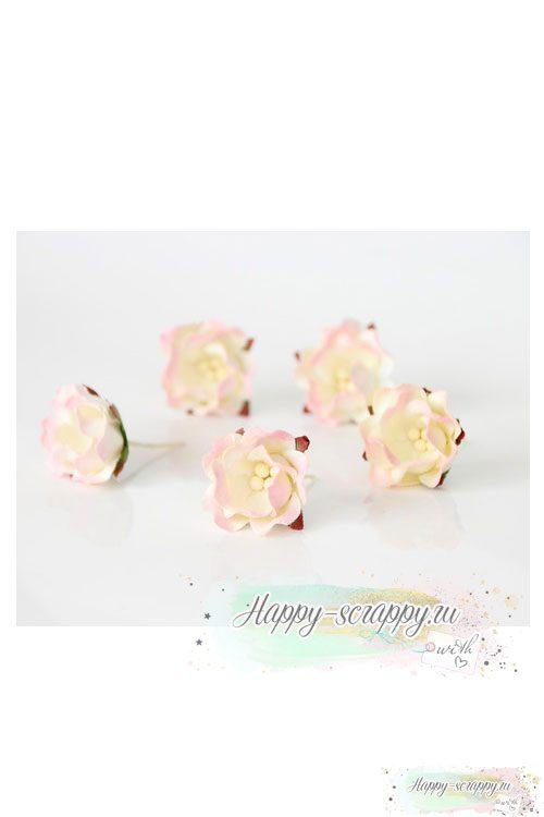 Цветы яблони св. розовый — молочный (1 шт)