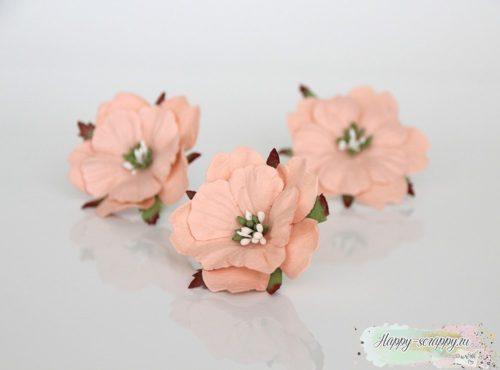 Пион светлый розово-персиковый