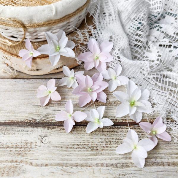 Набор цветов Pastel flowers — Гортензии Дуболистные, бело-розовые