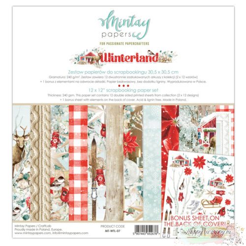 Winterland от Mintay papers
