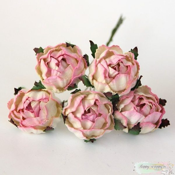 Ранункулус - светло-розово-молочный (1шт)