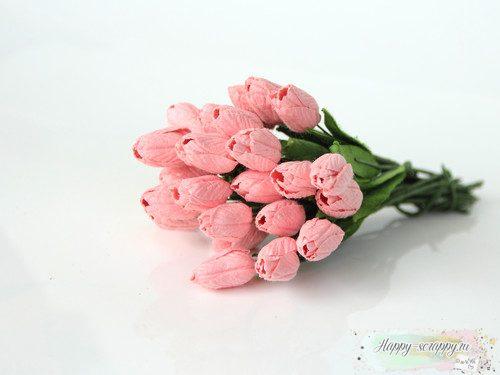 Тюльпаны розово-персиковые (1шт)