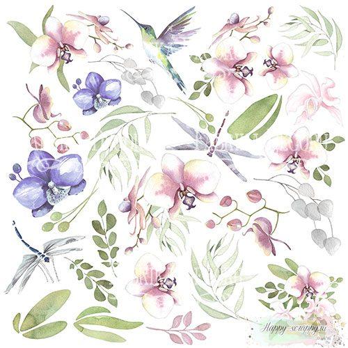 Лист с картинками для вырезания Wild orchid