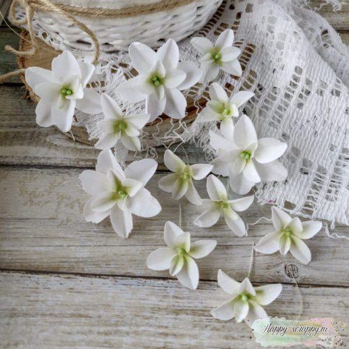 Набор цветов Pastel flowers — Гортензии Дуболистные, белые
