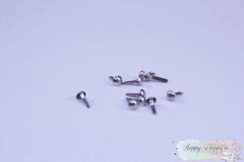 Брадсы маленькие серебро