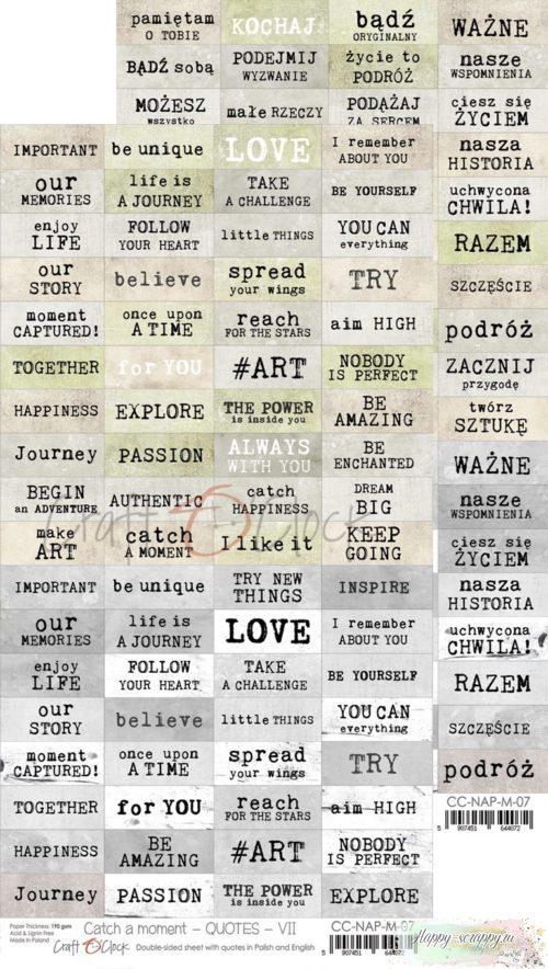 Набор фраз для вырезания Catch a moment - quotes - 7